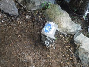 栃木県足利市 ハクビシン 防研 センサー式赤外線カメラ