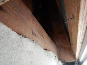 防研 出窓下隙間 イタチ侵入口