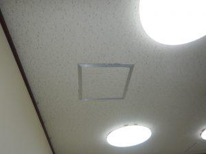 大阪市 イタチ・ハクビシン 天井裏点検口