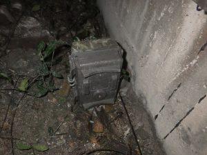 福井県越前町 アライグマ センサー式赤外線カメラ 建物外周 防除研究所